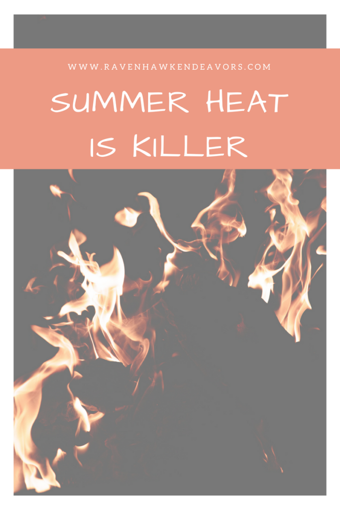 Summer Heat Is Killer 1